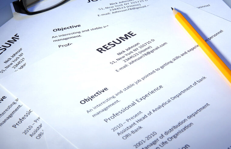 Types Of Resume! Select Best Theme According To The Job
